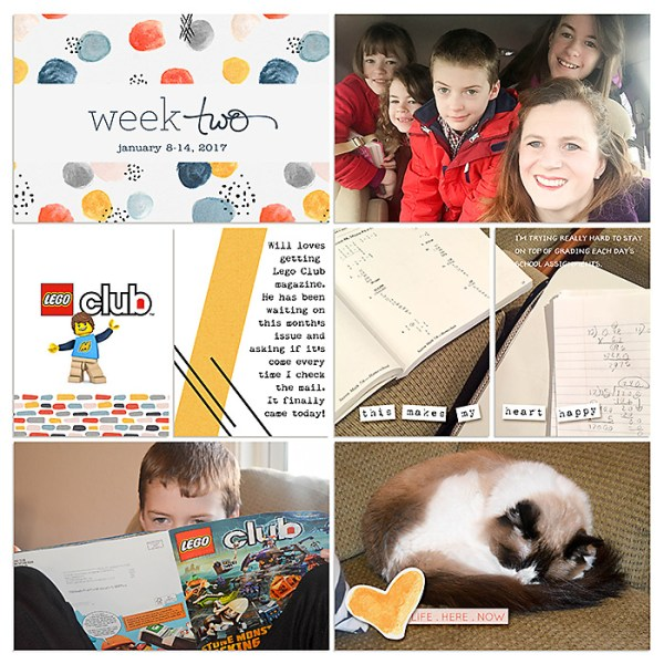 Digital Project Life 2017 Week 2