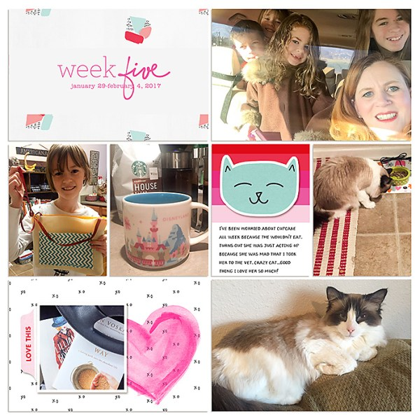 Digital Project Life 2017 | Weeks 4 & 5