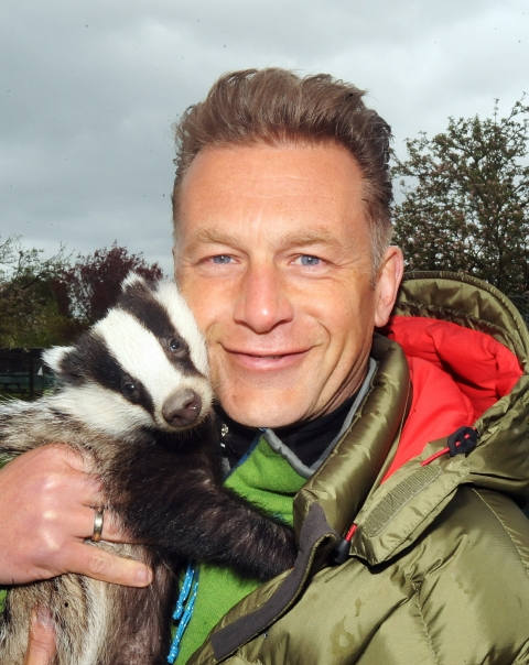 Packham and badgers
