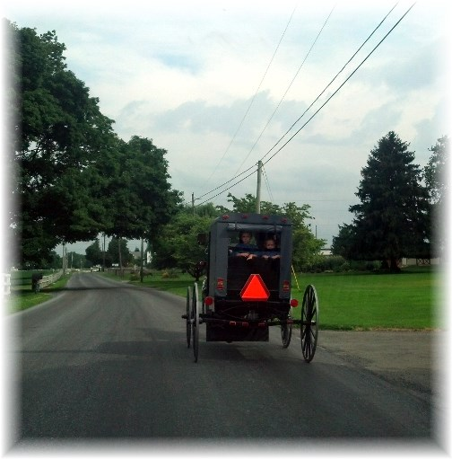Amish buggy in Lancaster County PA