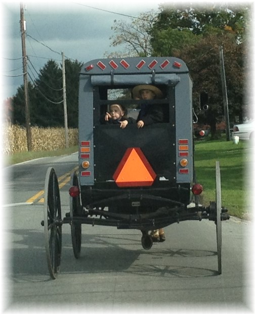 Amish buggy 10/16/14