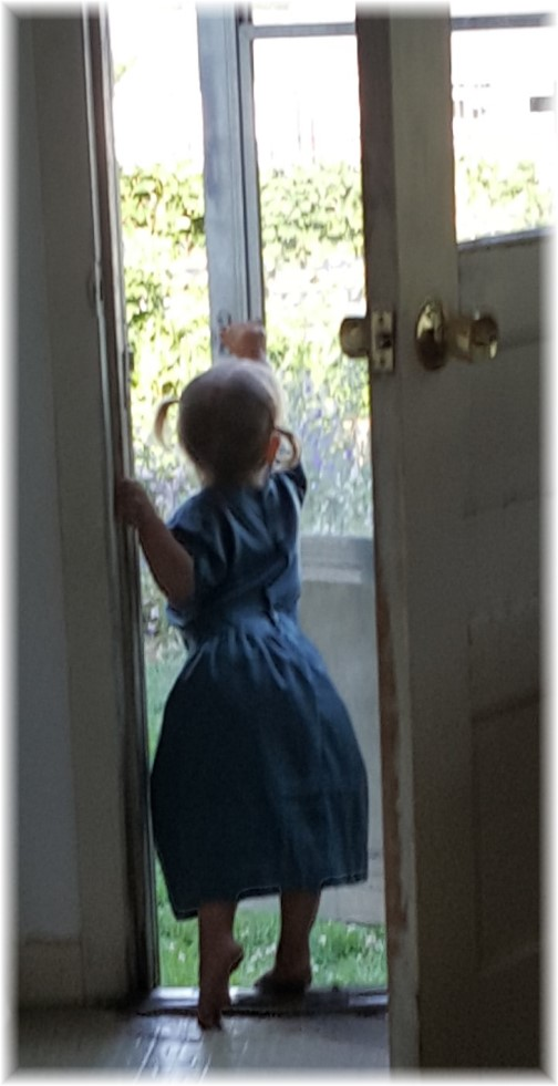 Child looking out door welcoming guest