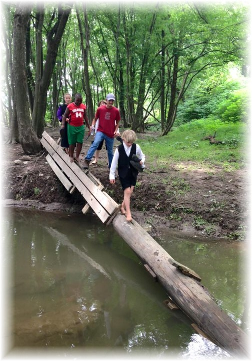 Crossing creek on log
