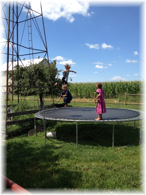 Amish children playing on trampoline 7/31/15