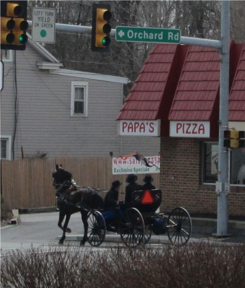 Amish open cart buggy, Mount Joy, PA 3/16/14
