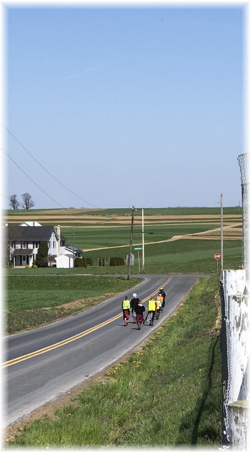 A view as the children head home.