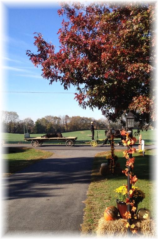 Amish wagon on Kraybill Church Road 10/31/15