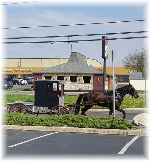 Amish pickup in New Holland, PA 4/20/17