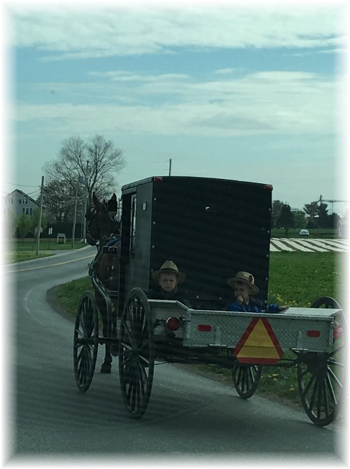 Horse-drawn pickup ride 4/20/17