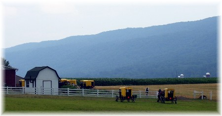 Yellow buggy Amish in Central PA