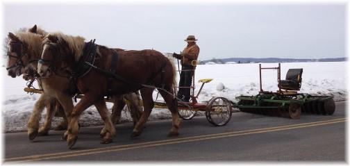 Old-order Mennonite team 2/12/14