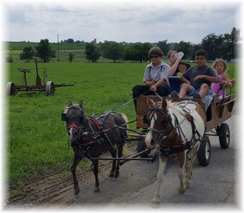 Amish tourist cart ride 7/15/17