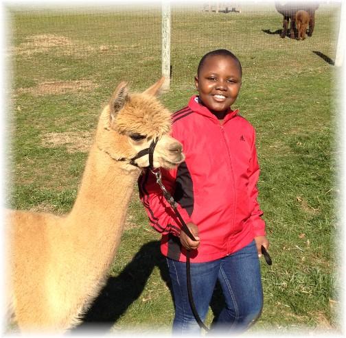 Neville with alpaca 11/15/15