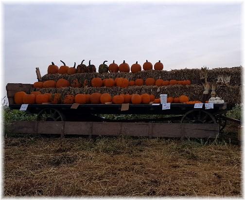 Pumpkin wagon, Lancaster County, PA  9/21/16