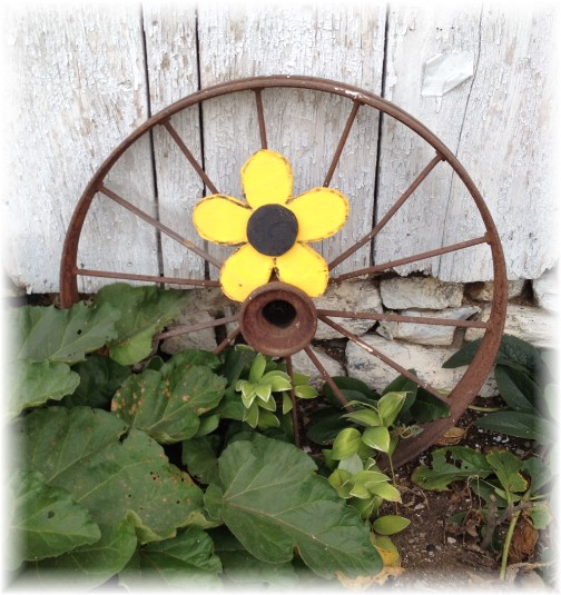 Wagon wheel flower