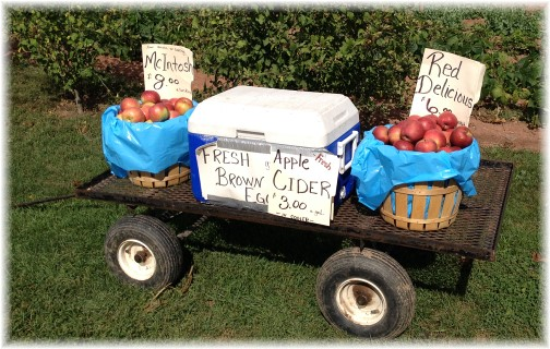 Apples for sale 10/9/14