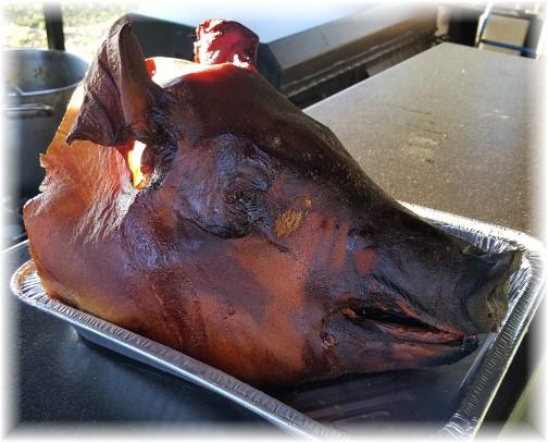 Pig roast head 6/7/16