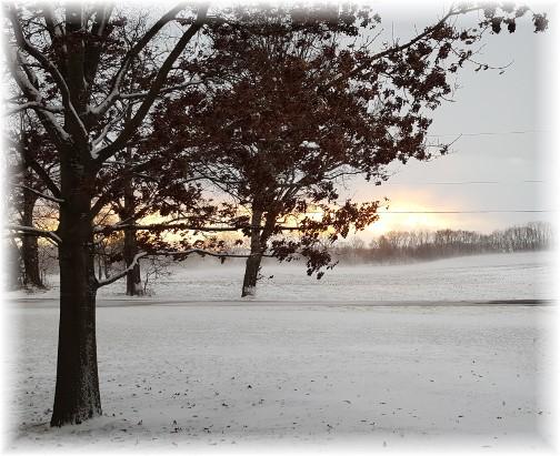 Sunset in snow 2/9/17