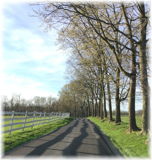 Lancaster County country lane 4/9/17
