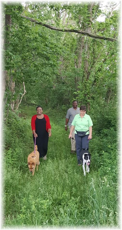 Donegal Trail walk 5/29/17