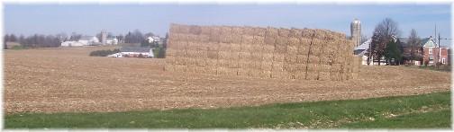 Fodder bales on Galen Martin's farm