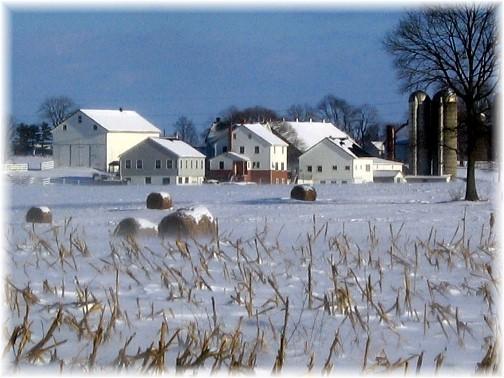 Lancaster County, PA winter farmview (Photo by Nick Nichols)