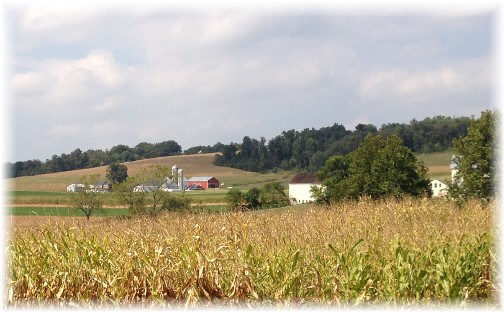 Lancaster County PA farm 9/19/14 (Click to enalrge)
