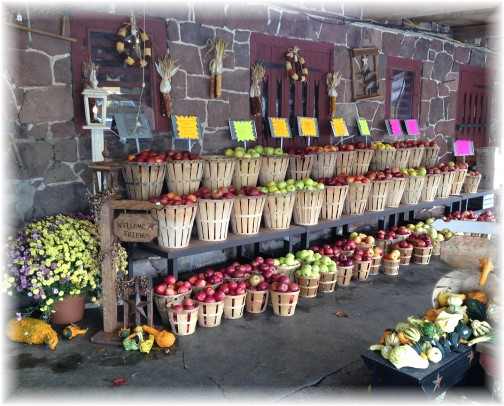 Village Farm Market apples 10/29/15