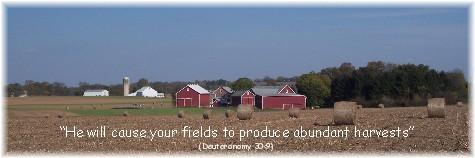 Abundant Lancaster County harvest