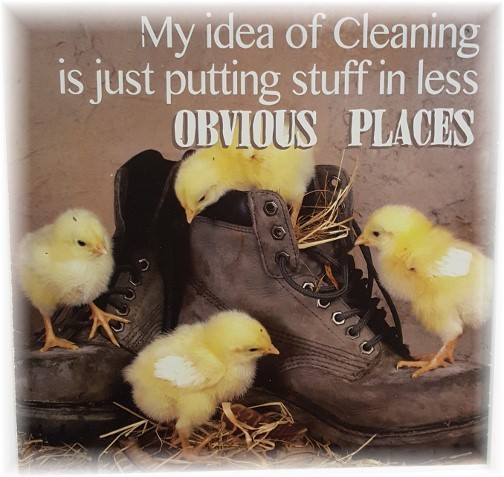 Cleaning idea