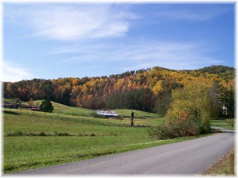 Foliage near Smoky Mountain National Park 10/28/10