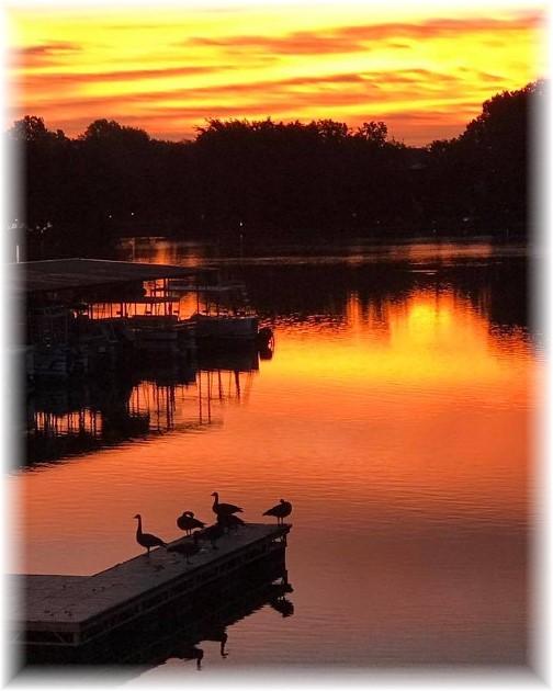 Sunrise on Lakewood Lake, Lees Summit, MO (Janet Beebe)
