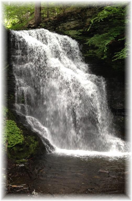 Bridal Veil Falls at Bushkill Falls, PA 7/21/15