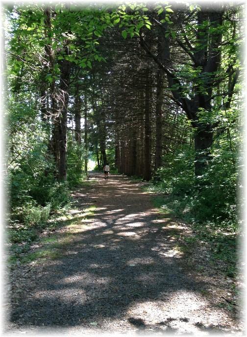 McDade Recreational Trail along Delaware Water Gap 5/29/15