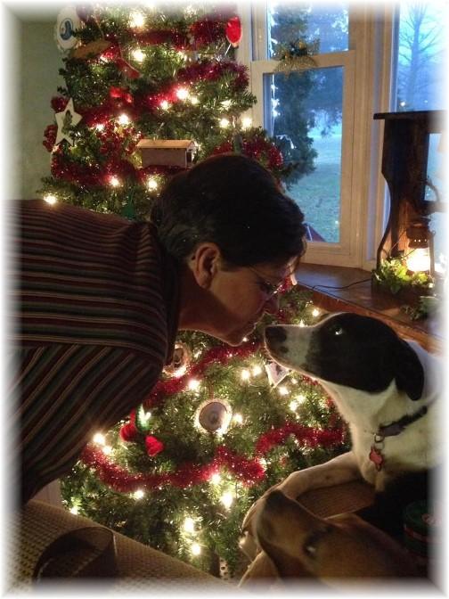 Mollie and Roxie on Christmas Eve 2014