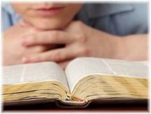Studying Bible