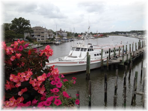 Canal in Lewes DE 9-20-14