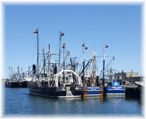 New Bedford fishing fleet 6/18/16