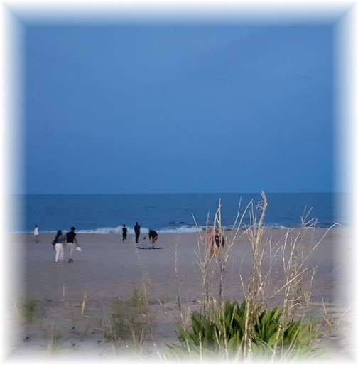 Rehoboth Beach 5/20/16