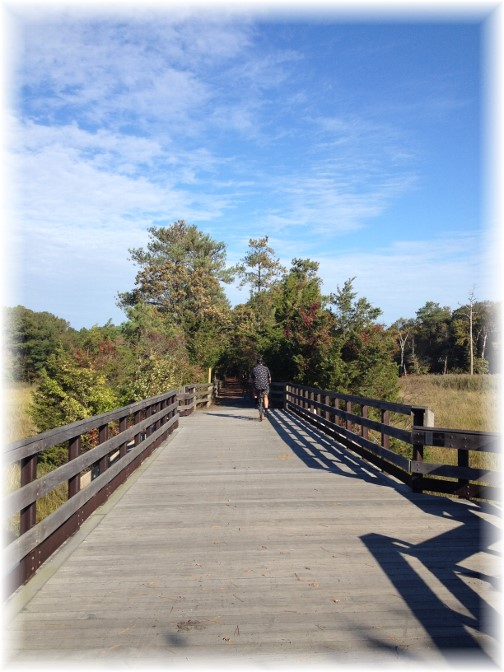 Raised boardwalk on Gordon Pond trail near Rehoboth Beach DE 10/15