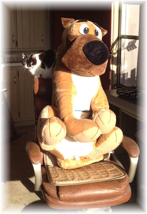 Scooby-Doo relaxing in sun
