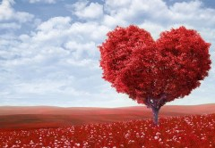 8-ideas-that-will-make-your-husband-fall-in-love-with-you-on-valentines-day-and-beyond