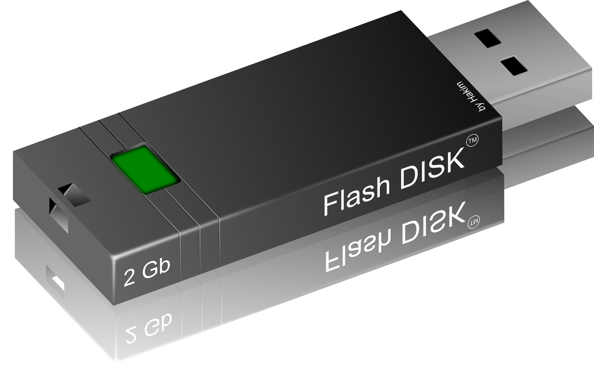 Black Flash disk,USB drives vector
