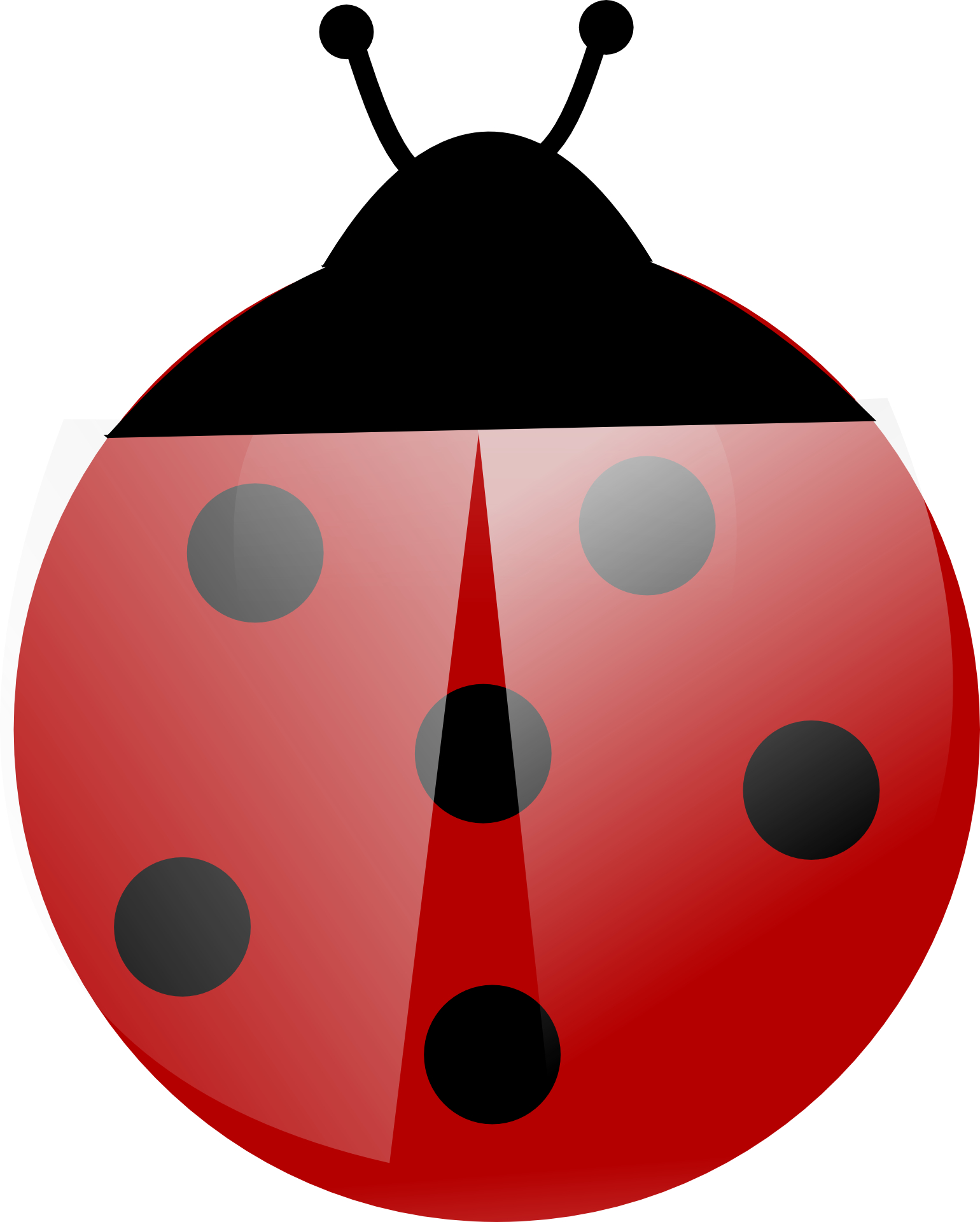 Cartoon animal, red ladybug vector,dots,insect,beetle