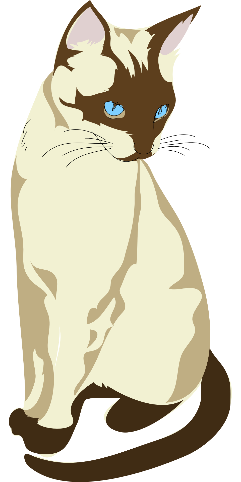 Cartoon brown sitting cat vector