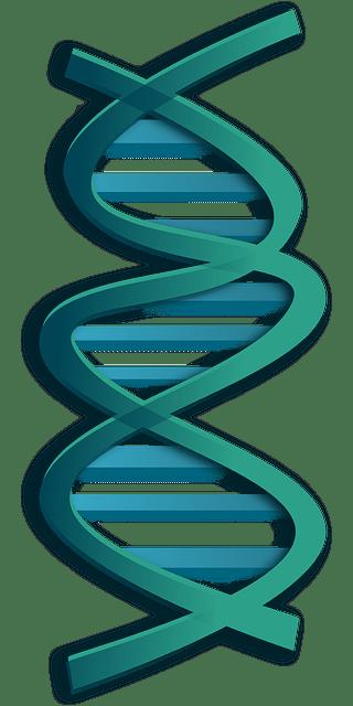 DNA Helix Free Vector
