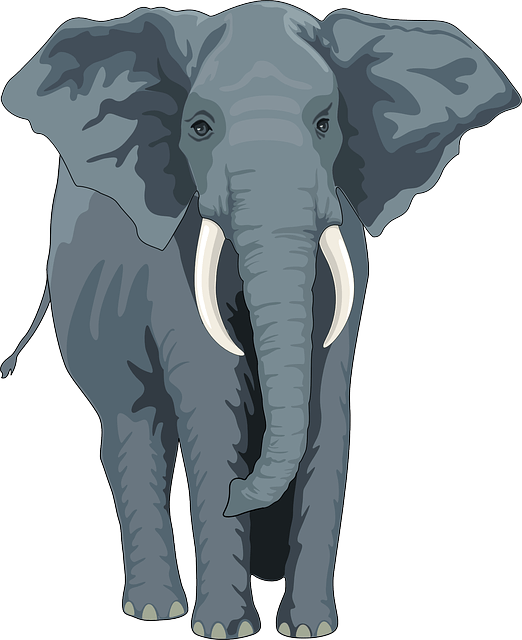 Elephant vector - free animal picture