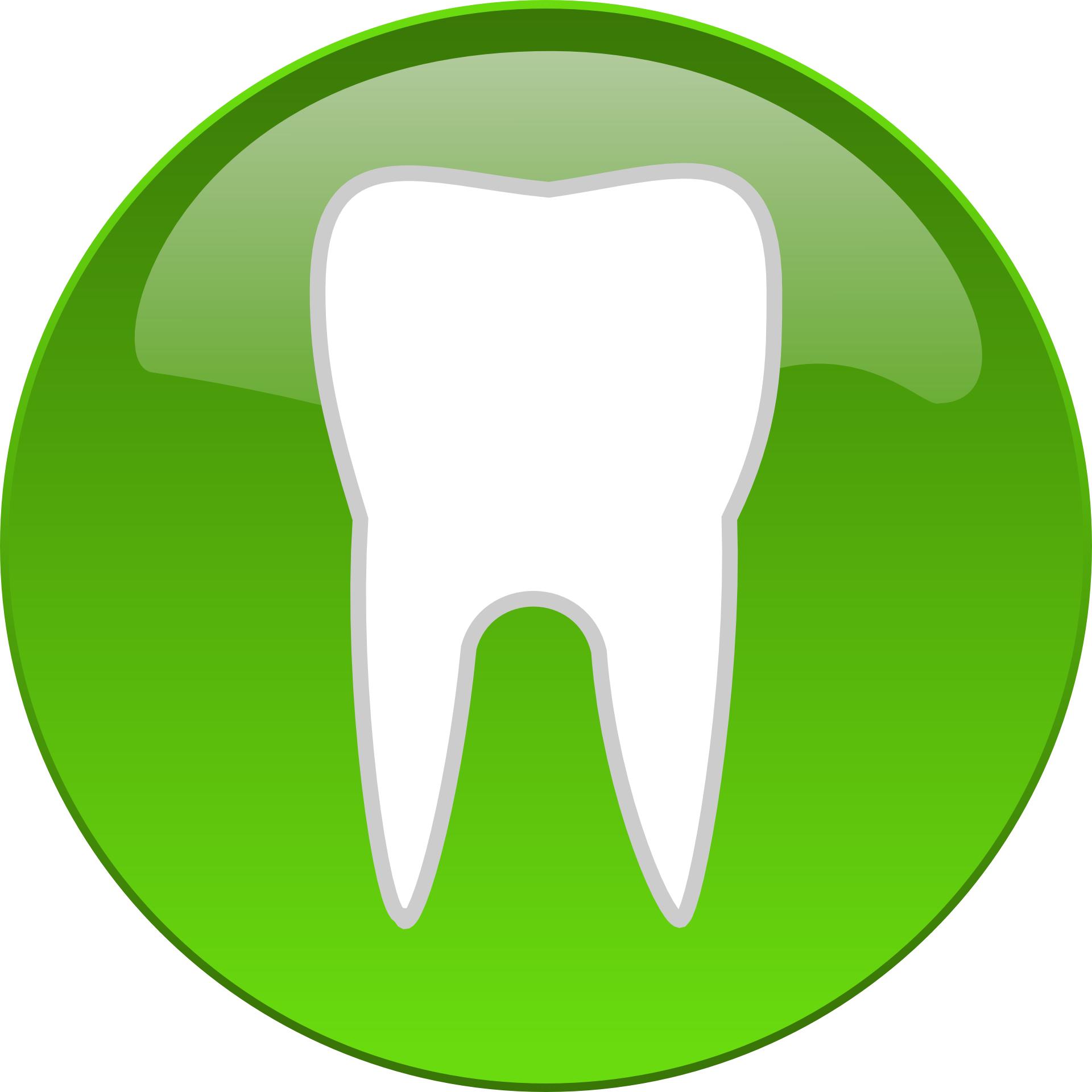 Health teeth vector