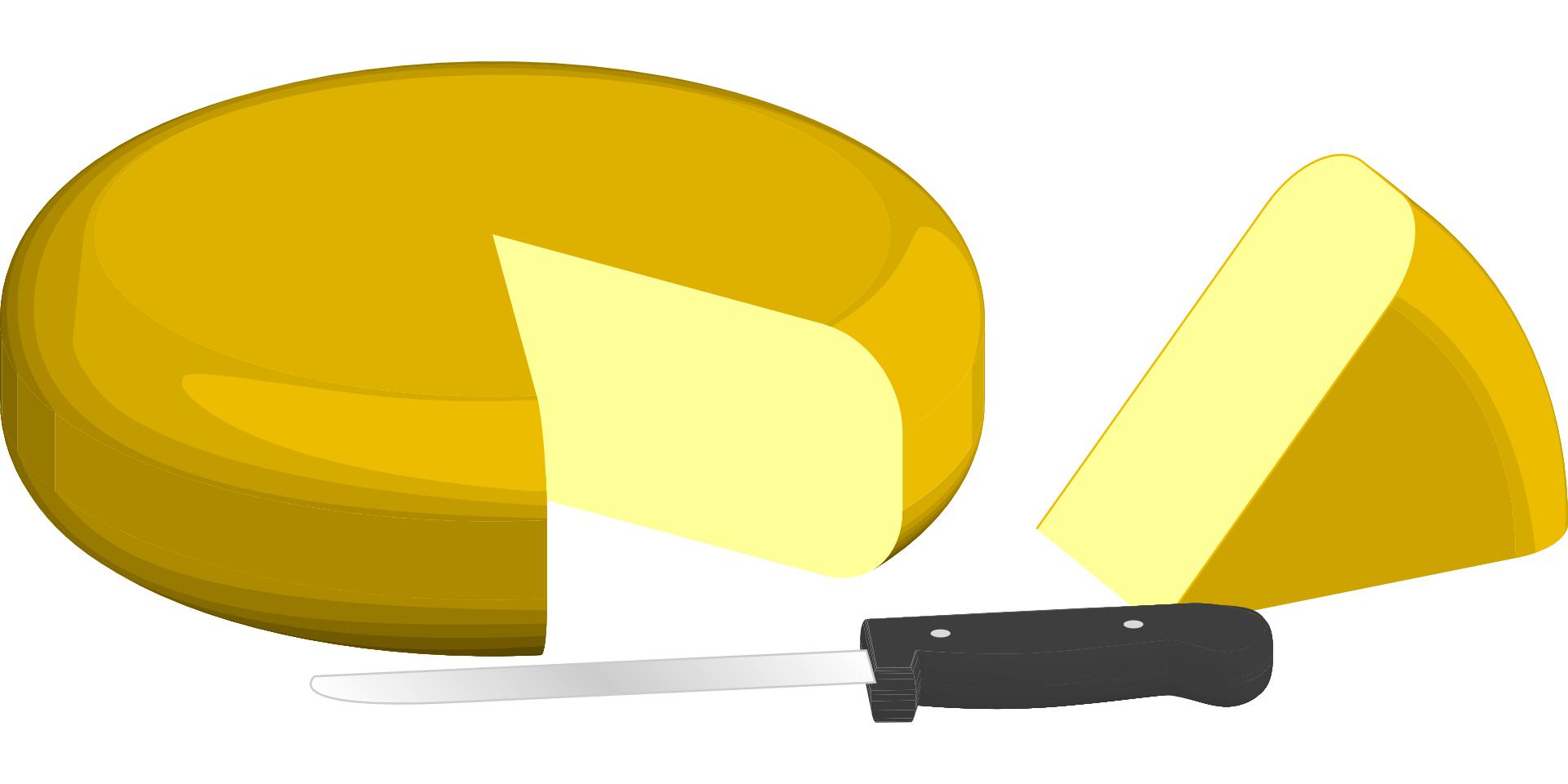 cheese knife vector