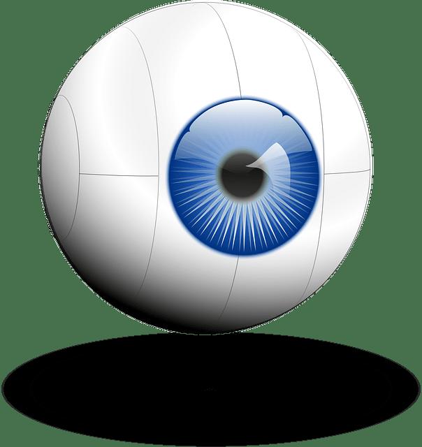 eye-eyebulb vector